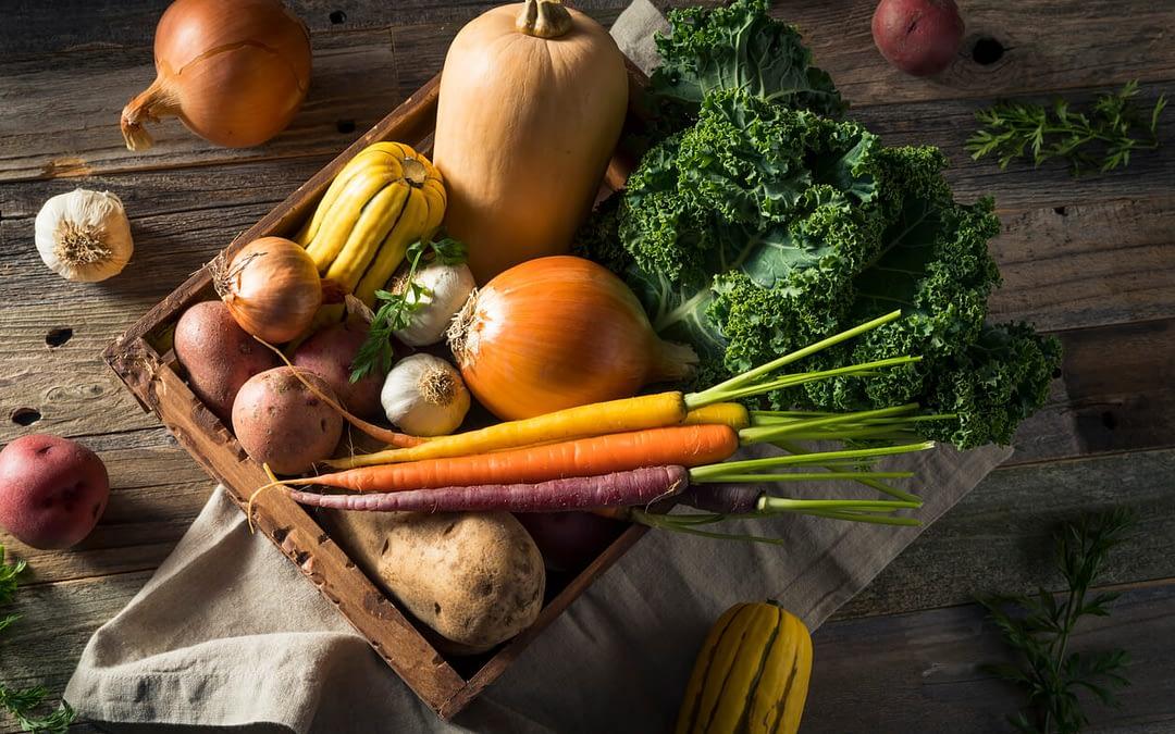 Tout savoir sur les aliments peu caloriques pour maigrir